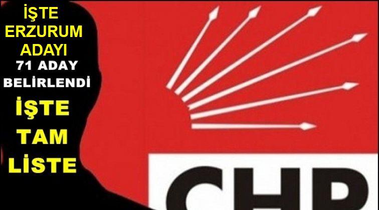 CHP'de 71 yeni aday belirlendi