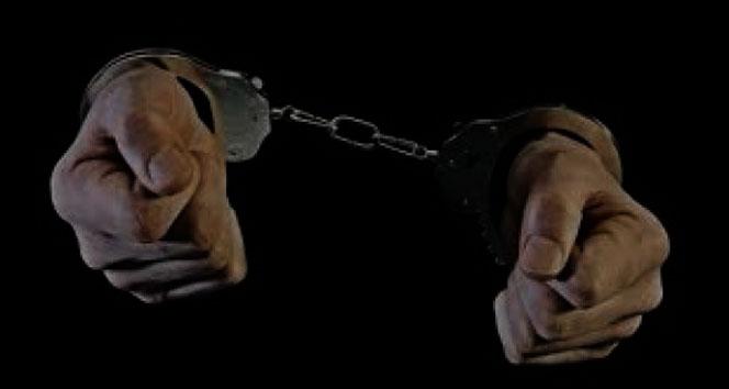 DBP İl Eşbaşkanı Cumhurbaşkanı'na hakaretten tutuklandı