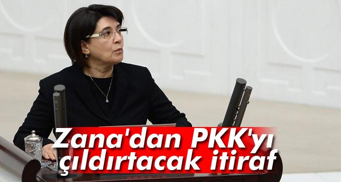 Zana, Valiye 'PKK'yı 20 devlet kullanıyor' demiş