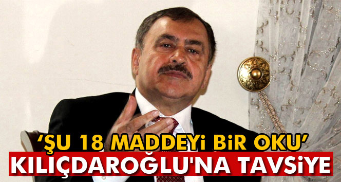 Bakan Eroğlu'ndan Kılıçdaroğlu'na 'oku' tavsiyesi