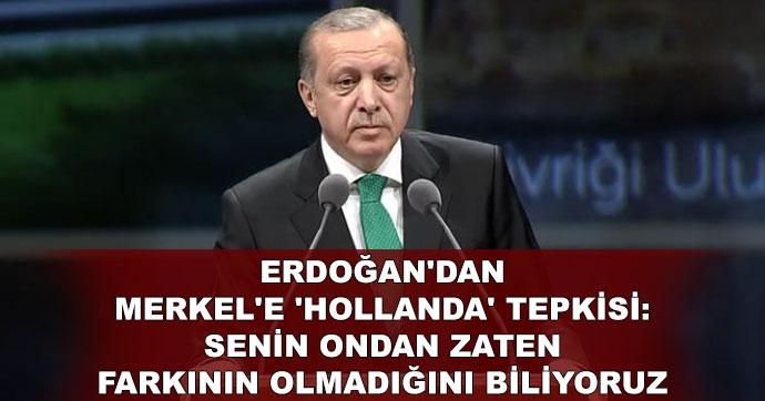 Erdoğan'dan Merkel'e 'Hollanda' tepkisi