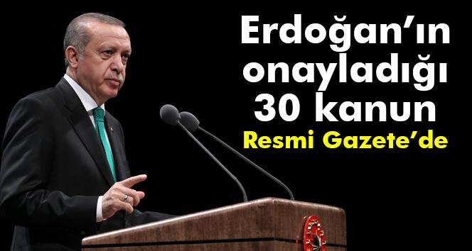 Erdoğan'ın onayladığı 30 kanun Resmi Gazete'de