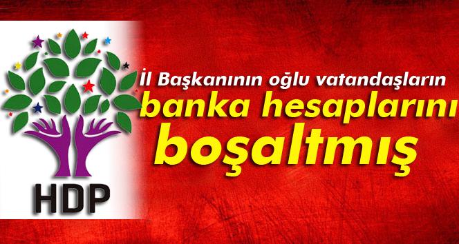 HDP İl Başkanının oğlu