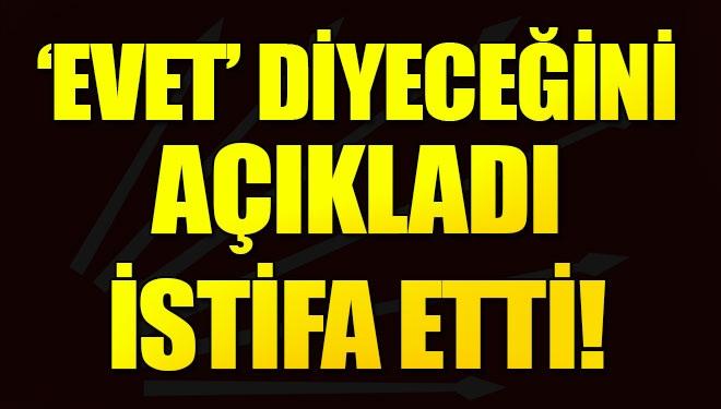 CHP'li belediye meclis üyesi partisinden istifa etti