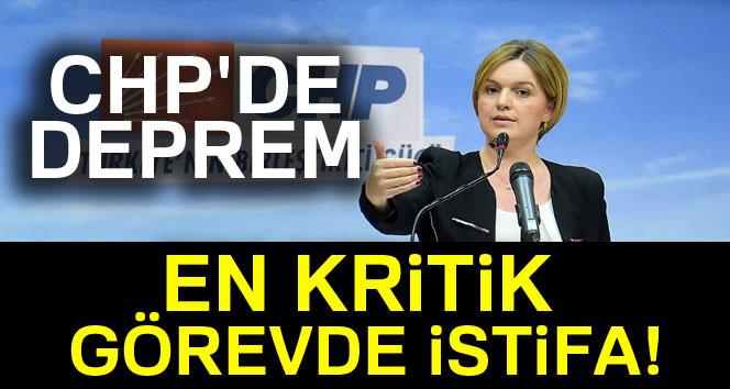 Böke CHP'deki görevlerinden istifa etti