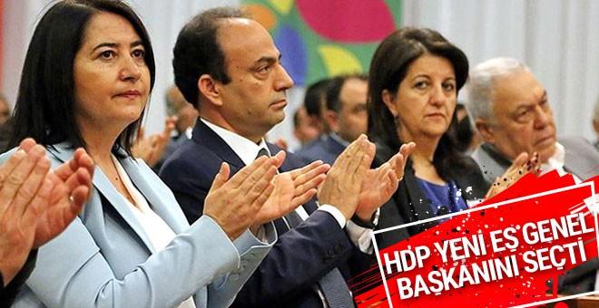 HDP'de yeni eş genel başkan