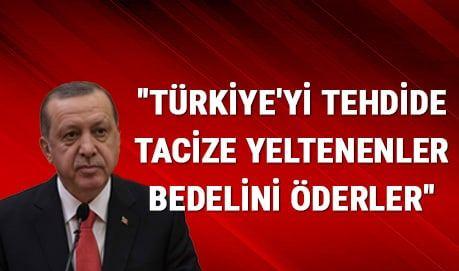Erdoğan: Türkiye'yi tehdide tacize yeltenenler bedelini öderler