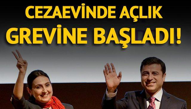 HDP'li Figen Yüksekdağ açlık grevine başladı