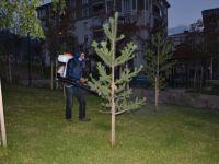 Palandöken Belediyesi Park İlaçlama Çalışmalarına Başladı