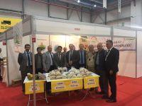 MHP İl Başkanı Karataş'tan tarım açıklaması